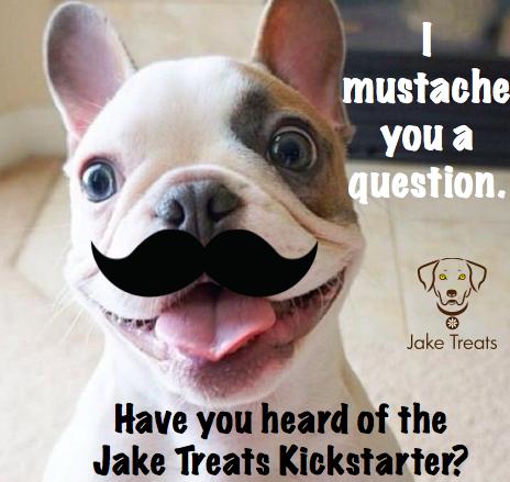 mustache dog 2