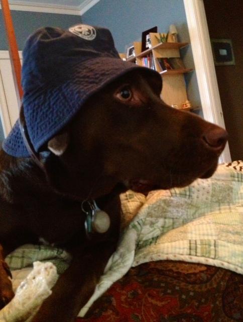 Jake in blue hat